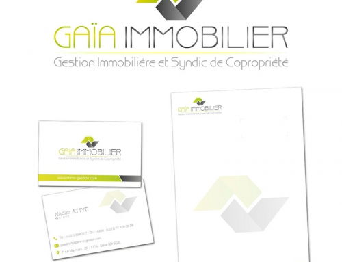 Creation Logo Cartes Entetes Et Site Internet Dune Agence Immobiliere