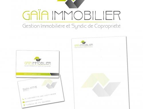 Création logo, cartes, entêtes… et site Internet d'une agence Immobilière