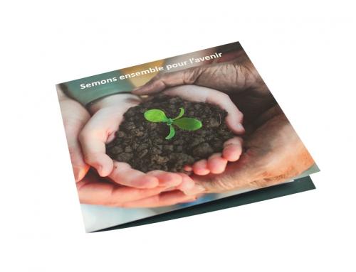 Création d'une carte de vœux écologique avec sachet de graines de fleurs