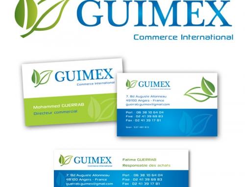 Création charte graphique complète Guimex Commerce International