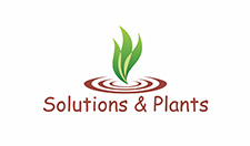 logo solutions & plants