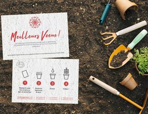 Impression cartes de vœux sur papier à planter